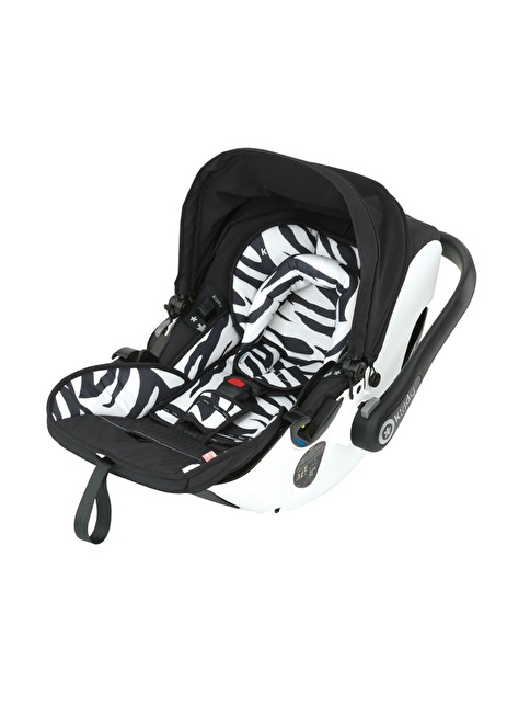 Kiddy Kiddy Evolution Pro2 2 Zebra Renkli